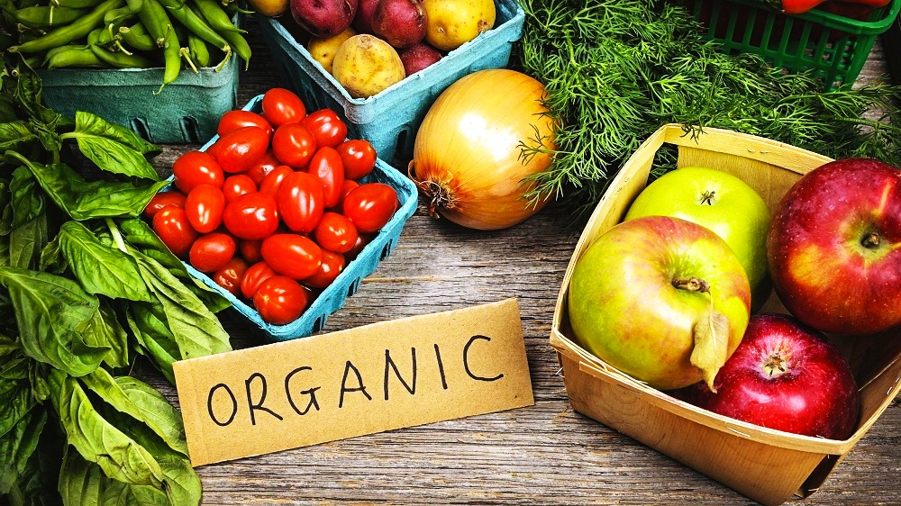 The importance of organic farming